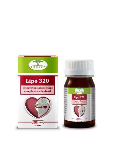 Lipo 320