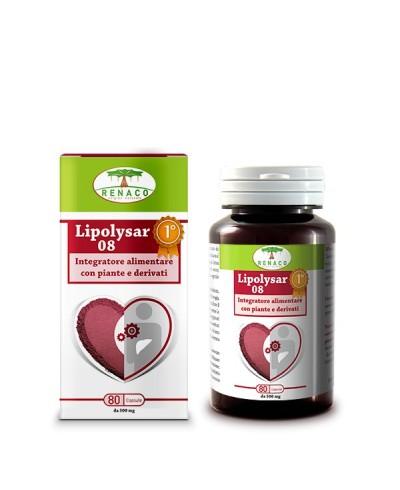 Lipolysar 08